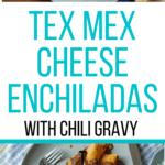 TexMex Cheese Enchiladas