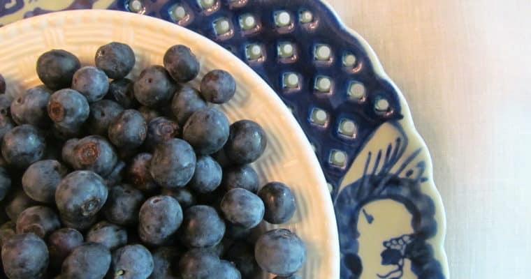 Bountiful Blueberries