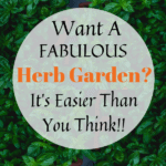 How to Grow Herbs, How to grow and Herb Garden