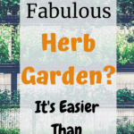Learn to Create an Herb Garden, Easy Tips to Learn to Grow Herbs