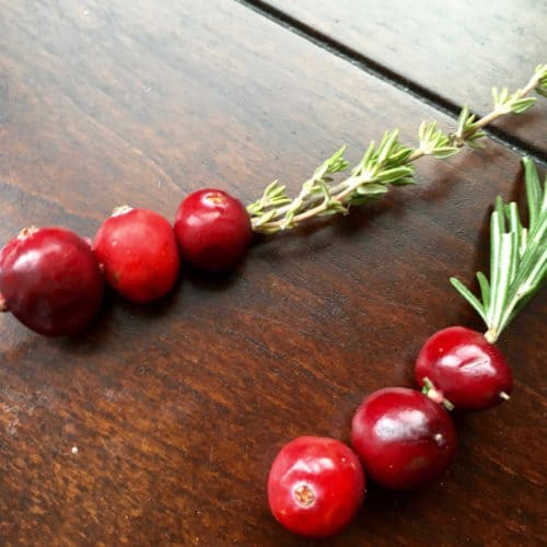 Fresh Cranberries on a Rosemary Sprig